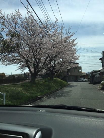 160412-2_神田川町3