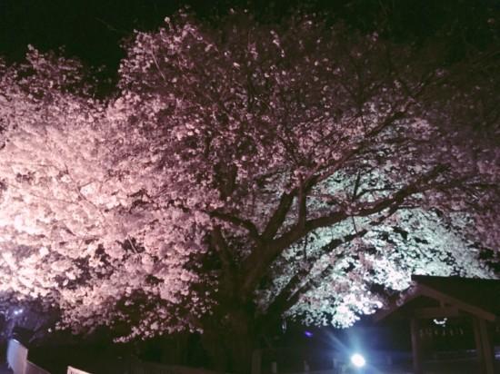福地神社_夜2