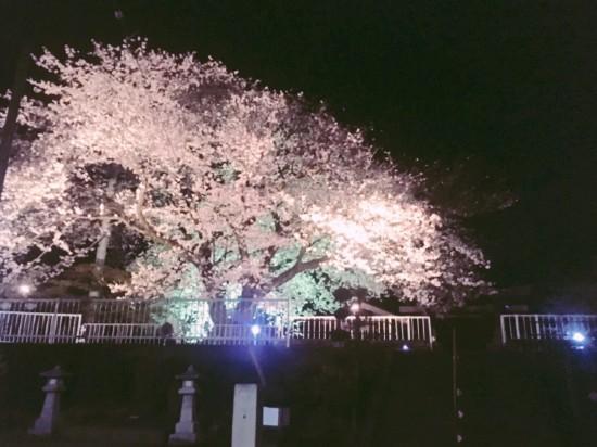 福地神社_夜1