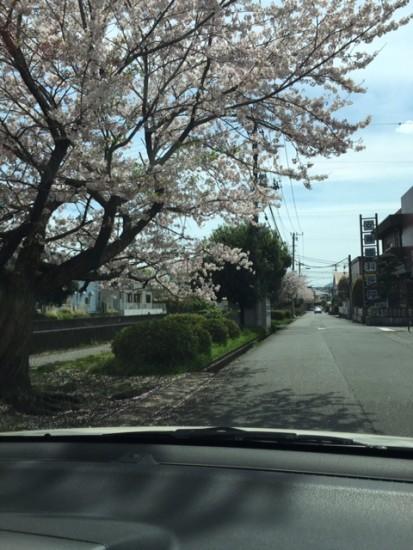 160412-2_神田川町1